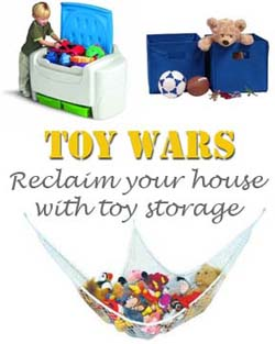 Toy storage for twins