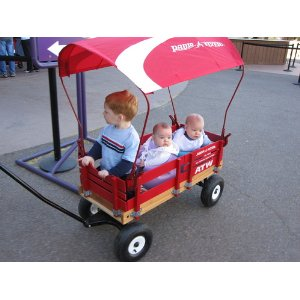 Radio Flyer Wagon Canopy for Kids