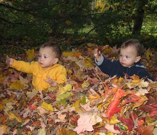 Twins playing in leaves in the fall