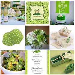 Twin Baby Shower Theme Ideas