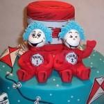 Twin Baby Shower Theme Ideas