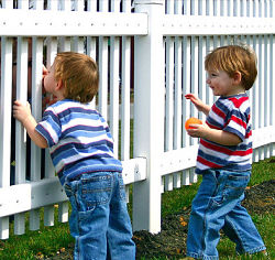 Twin boys fence