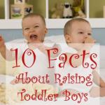 10 Facts About Raising Toddler Boys